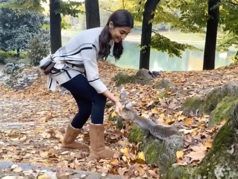 Video: Pooja Hegde feeding nuts to a squirrel amid shooting for Radhe Shyam in Italy with Prabhas is adorable