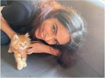 Madhurima Tuli's got a new kitten