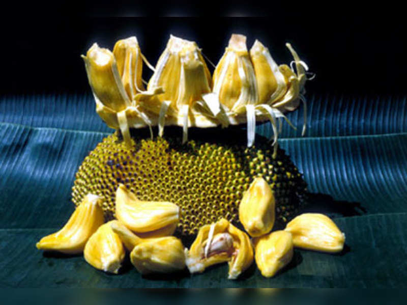 Jackfruit: Jack of all fruits (Indiapicture)