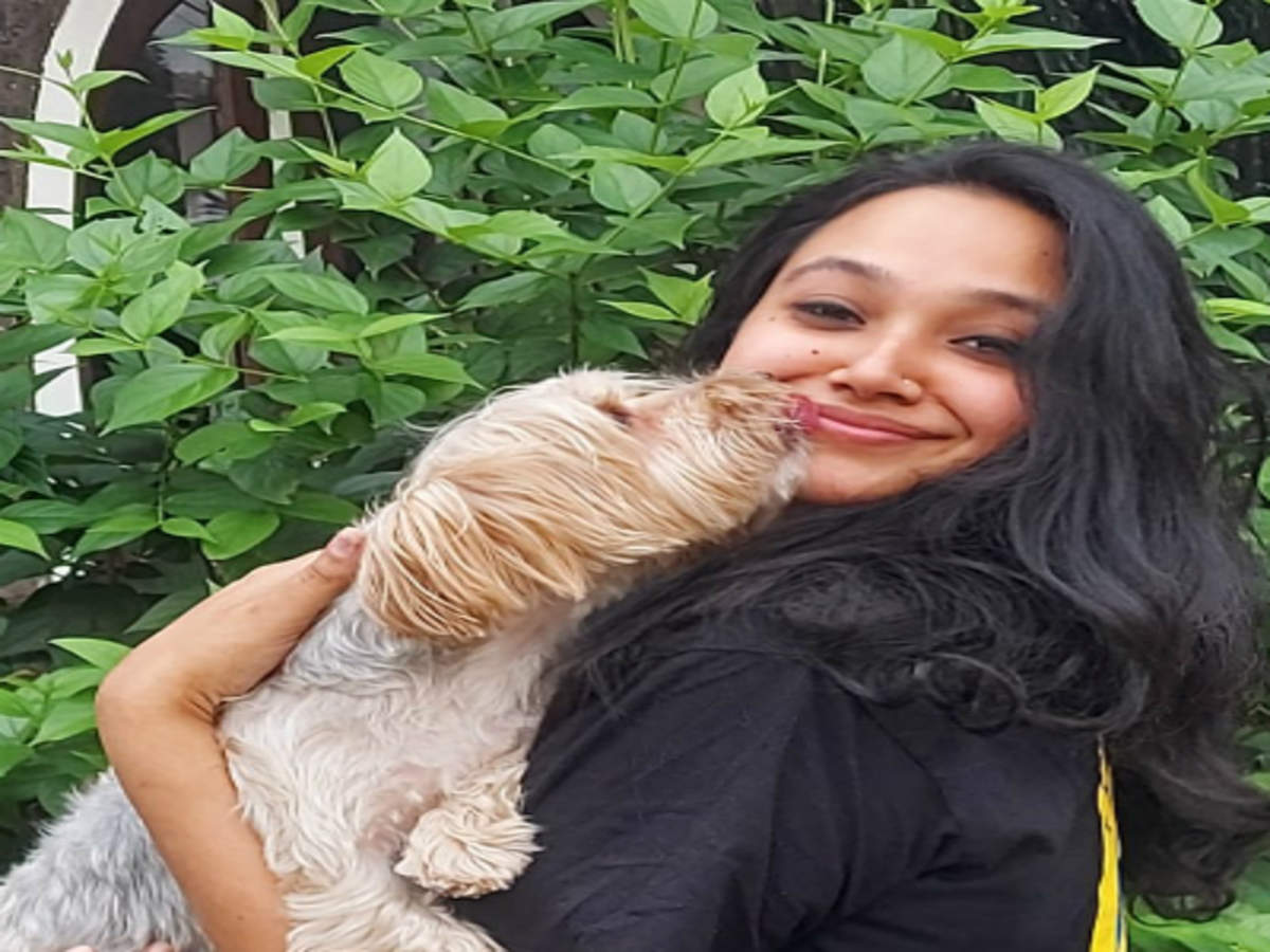 Dog flies 26 hours from Dubai to Kerala for family wedding | Kozhikode News  - Times of India