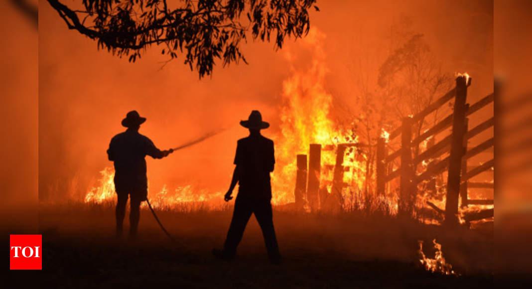 Australia bushfire inquiry warns 'compounding disasters' to come