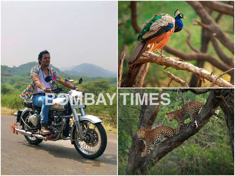 Randeep Hooda and (right) the pictures he clicked during his trip to the animal reserve in Jaipur