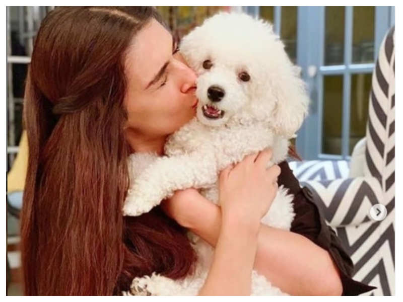 """Kriti Sanon wishes her """"pawsomest baby"""" on its birthday: I love you like I woof you!"""