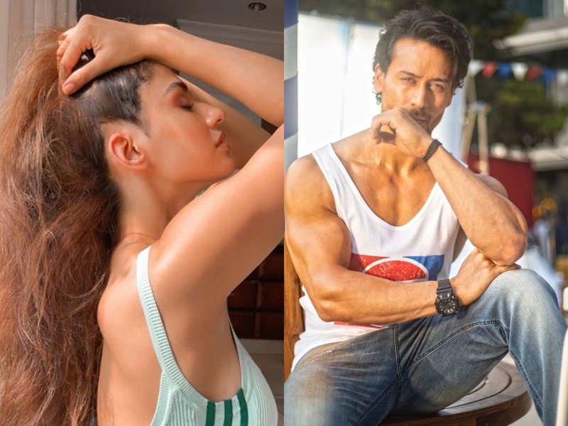 Disha Patani shares an alluring picture on Instagram; Tiger Shroff all hearts for her