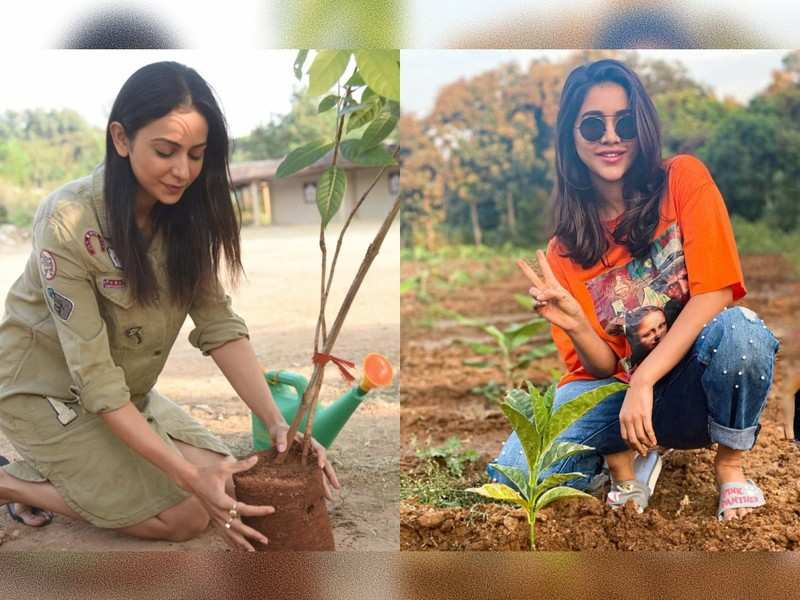 Rakul Preet Singh and Nabha Natesh take up the Green India Challenge and plant saplings