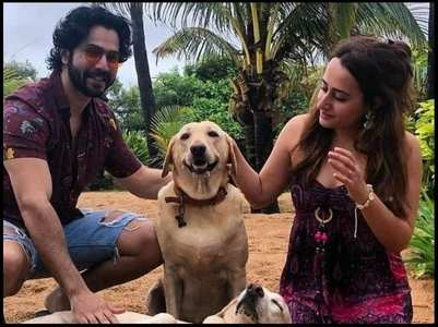 Unseen pic of Varun-Natasha with dog
