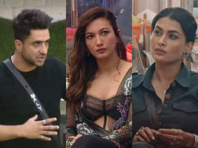 BB14: Pavitra abused Gauahar, says Aly