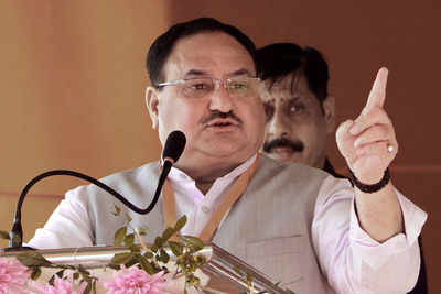 Eye on 2024 polls, Nadda to go on 120-day tour across India | India News - Times of India
