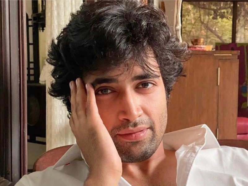 Pic Courtesy: Adivi Sesh official Facebook page