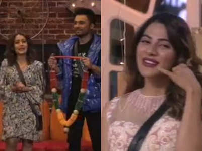 BB14: Neha to find 'bhabhi' for brother Tony