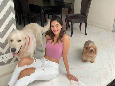 Pics: Ananya Panday's paw-some Sunday