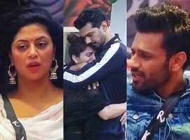 BB14: Kavita calls #Rubinav's story fake