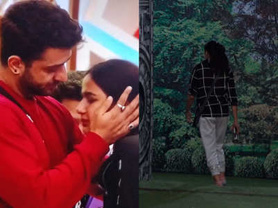BB14: Aly Goni gets evicted, Kavita walks out
