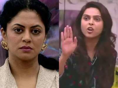 Meanest Bigg Boss housemates of all times