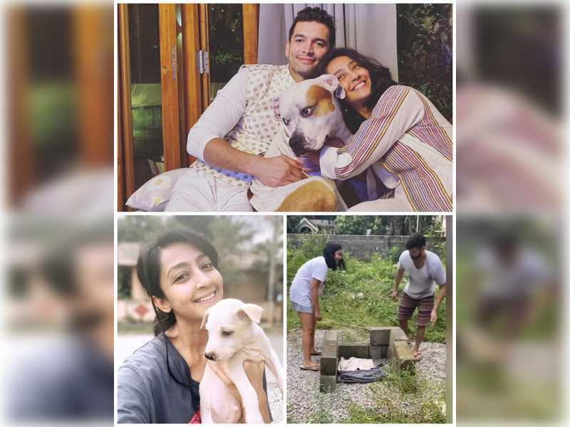 When Diganth Manchale and Aindrita Ray fostered ten stray puppies