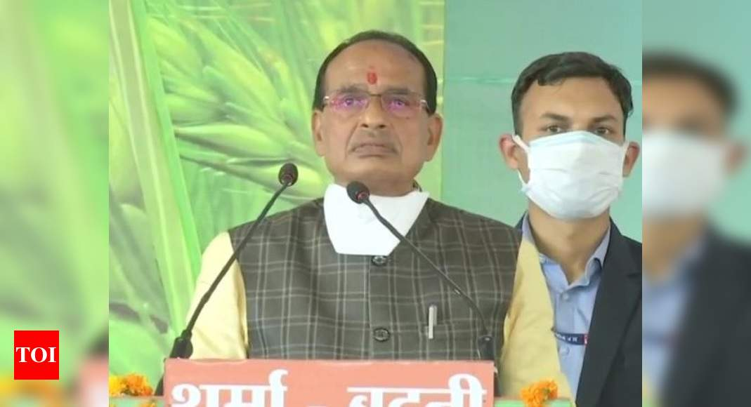Those plotting 'love jihad' will be destroyed: Shivraj Singh Chouhan | India News – Times of India