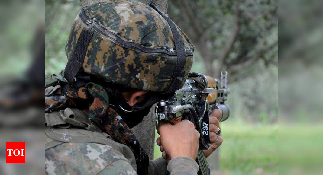 Two terrorists killed, another held in encounter with security forces in J&K's Poonch - Times of India
