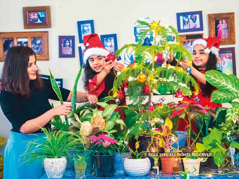 Gurgaon resident Indrani Mazumdar and her twins Ishika and Ishanvi decorated their plants for Christmas