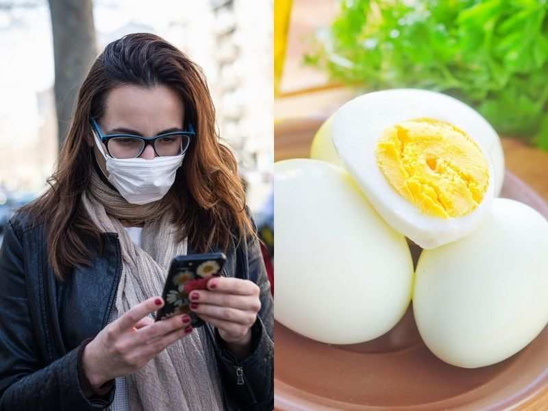Bird flu scare: Is it safe to consume eggs and chicken? Here's what you should know