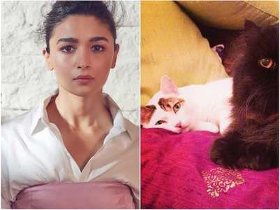 Alia Bhatt gets emotional for her pet