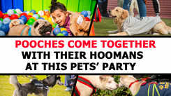 #PetFed: Pooches come together with their hoomans at this pet party