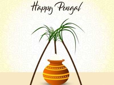 Pongal 2021: Images, Cards, Greetings and GIFs