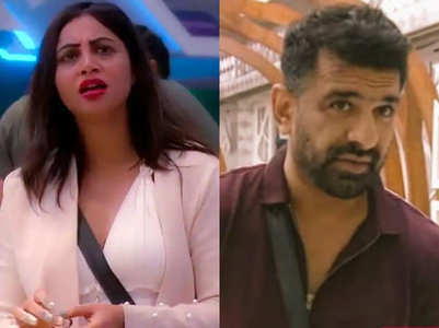 BB14: Arshi calls Eijaz a 'thankless person'