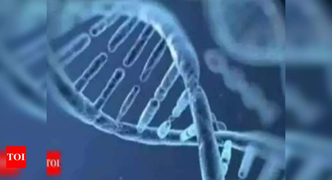 DNA test can quickly identify pneumonia in Covid-19 patients, aiding faster treatment: Study – Times of India