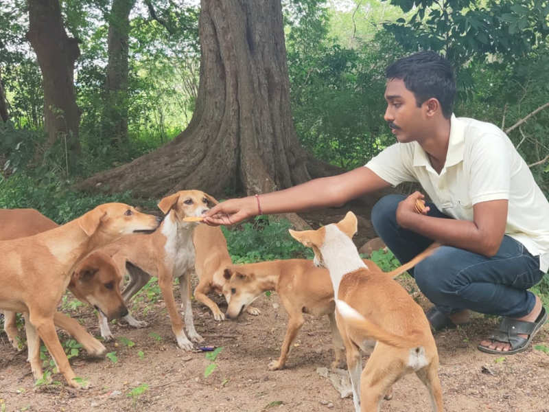 Unlikely Heroes: I made it a point to feed 300 dogs a day, says Sai Vignesh