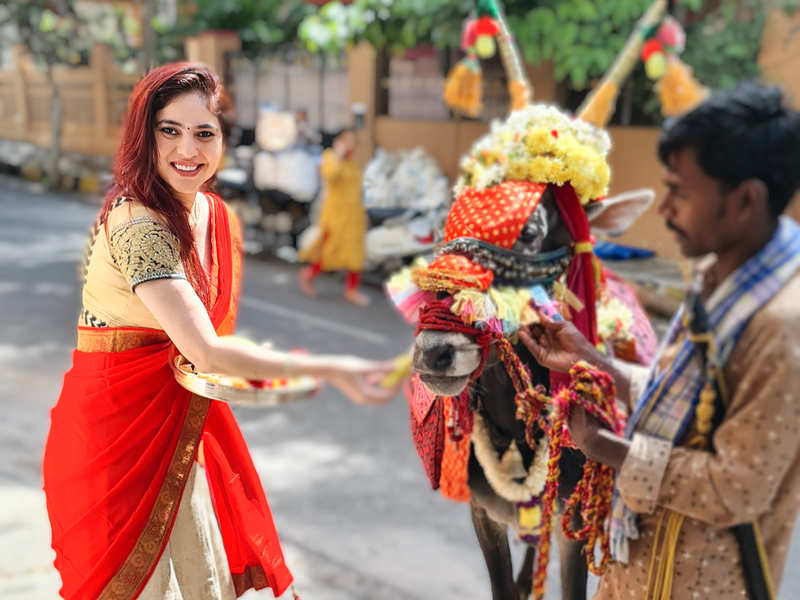 Doing pooja for cows during the festival is a tradition for me: Sherin