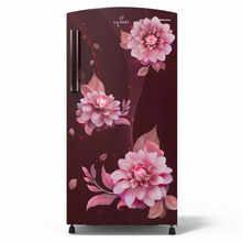 Lloyd Single Door 200 Litres 3 Star refrigerator Begonia Wine GLDF213SBWT2PB