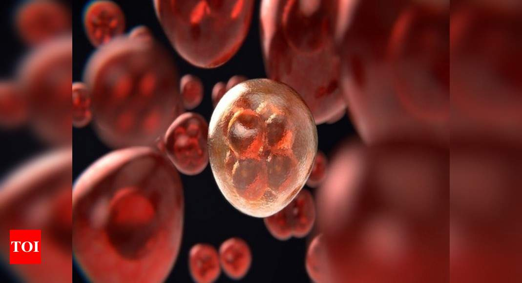 Researchers find how cancer can be killed by body's own immune system