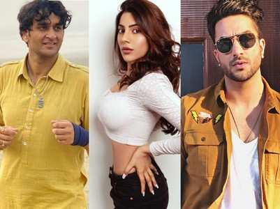 Bigg Boss 14: Contestants who have re-entered