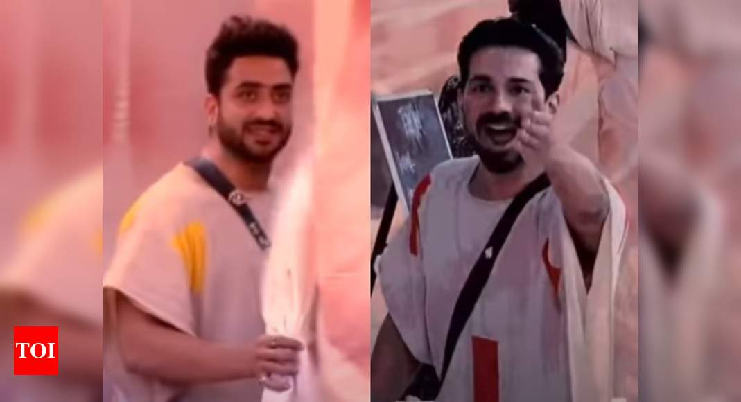 Bigg Boss 14: Aly Goni and Abhinav Shukla get into a tiff; call each other 'bhains' and 'bandar', watch v - Times of India