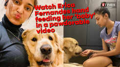Erica Fernandes hand feeds her pet dog as he refuses to eat himself
