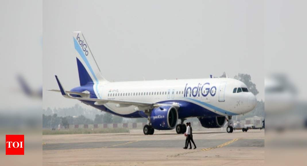 IndiGo 8th biggest airline in terms of flights