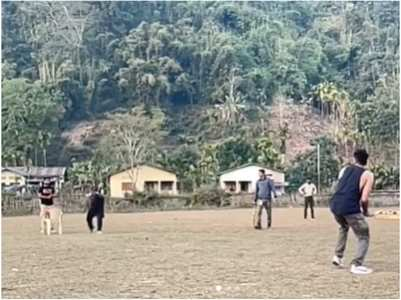 Watch: Ayushmann Khurrana plays cricket