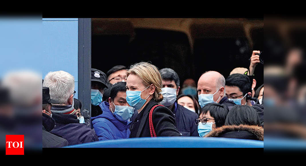 Covid-19 origin: WHO probe team in China visits animal health facility - Times of India