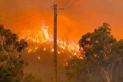 More than 70 homes lost in destructive Perth bushfire