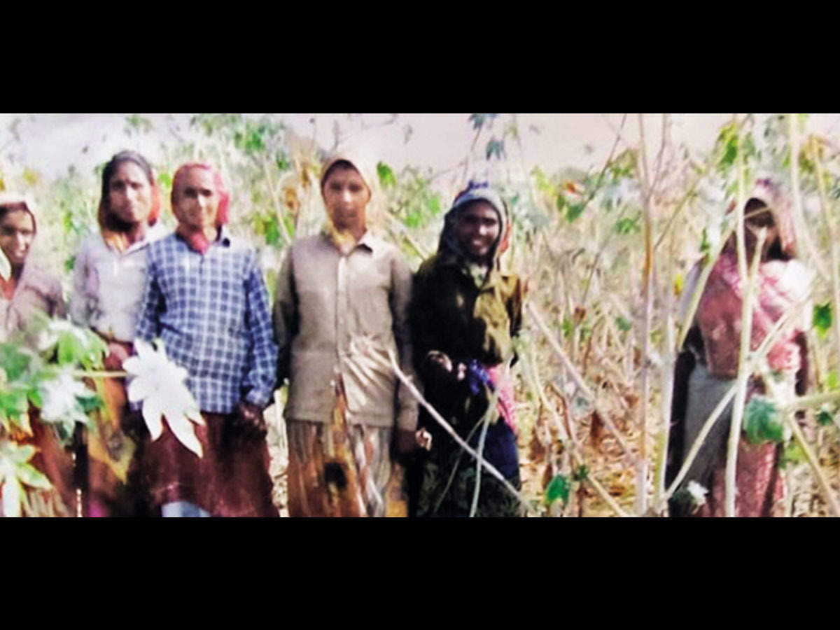 Image result for Gujarat: 51 women who turned wasteland into farmland face eviction threat