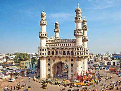 Hyderabad gets recognition as Tree City of the World | Hyderabad News - Times of India