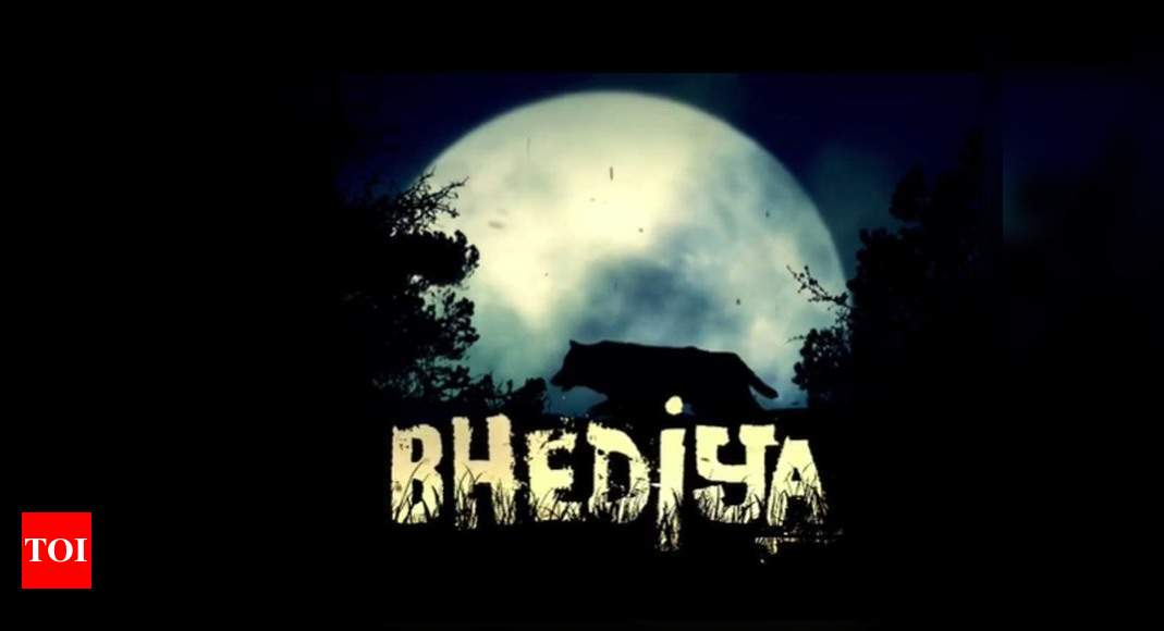 Varun Dhawan, Kriti Sanon team up for horror-comedy 'Bhediya' - Times of India