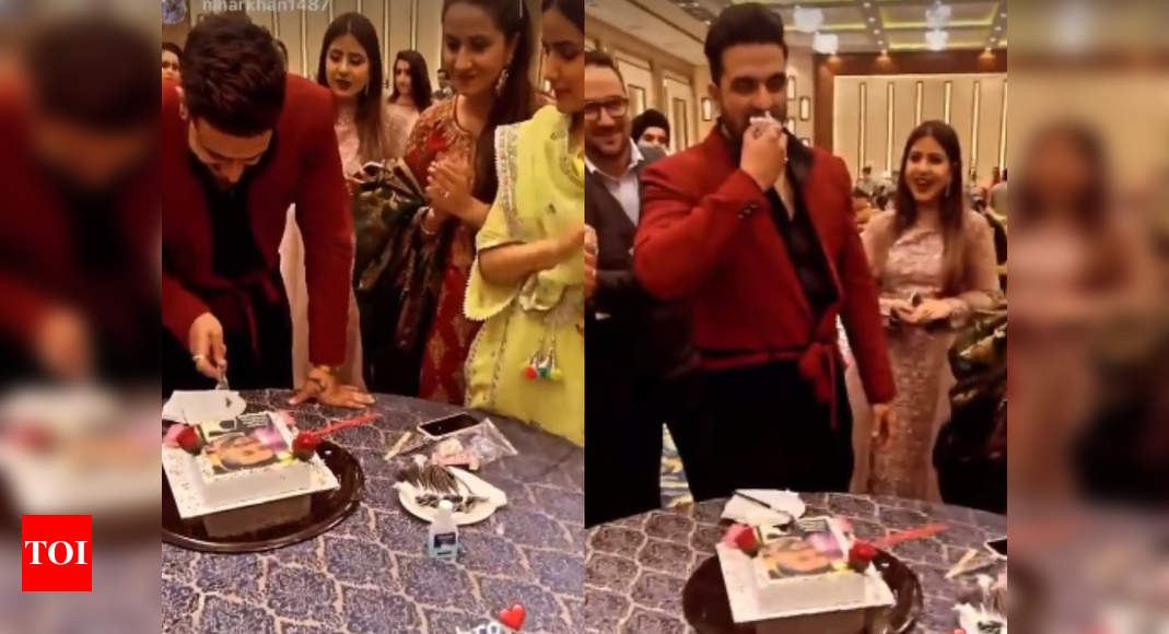 Bigg Boss 14's Aly Goni celebrates his birthday with Jasmin Bhasin and family in Kashmir; watch - Times of India