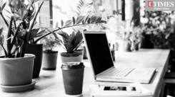 5 plants that can be your WFH desk buddies