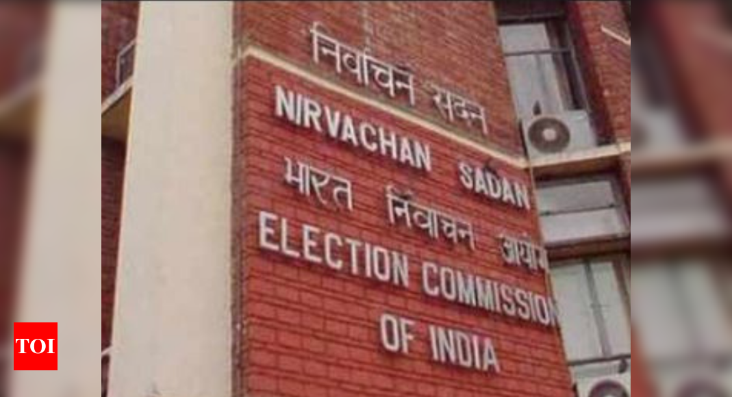 Election security plan, randomisation of forces to be vetted by observers: EC to states