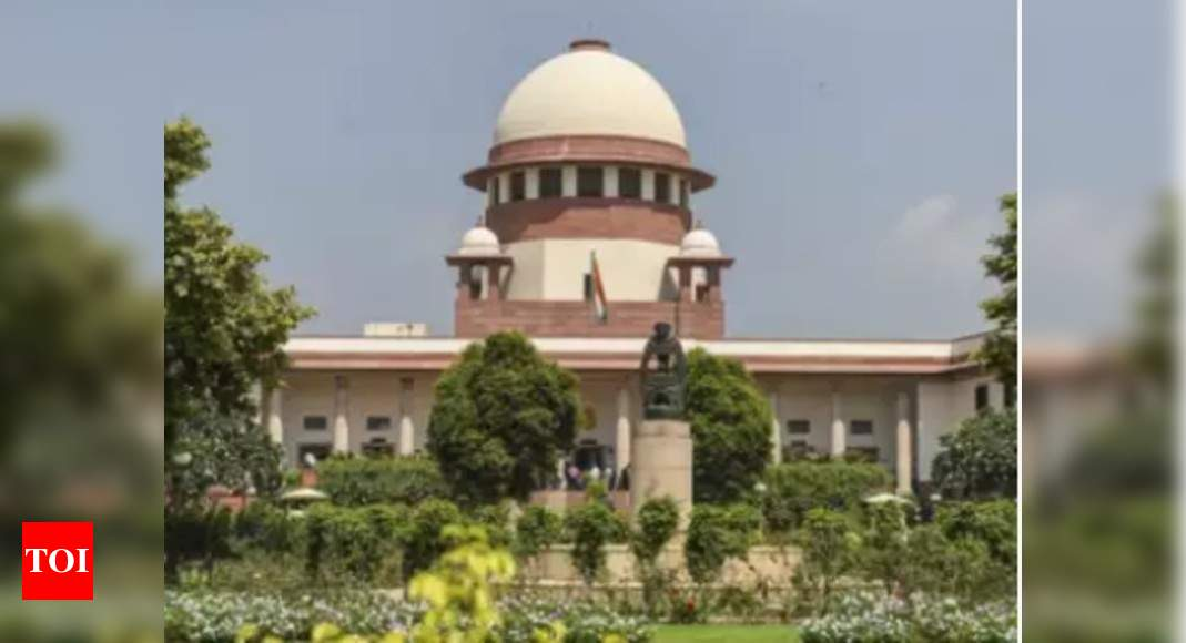 Can gold smuggling be termed as 'terrorist activity': SC to examine | India News – Times of India