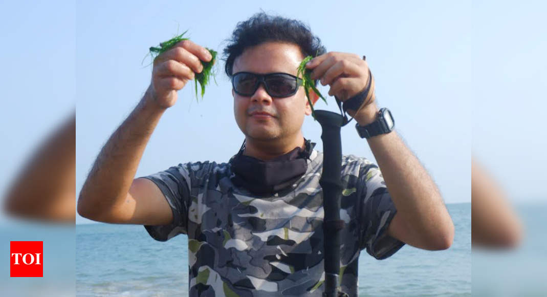 Two new red seaweed species discovered from West, South-East coast – Times of India