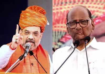 The Buzz of the Pawar-Shah Gathering Adds Spice to the Maharashtra Saga | India News