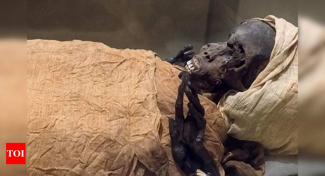 March of the Mummies: Egypt readies for Pharaohs' Parade – Times of India