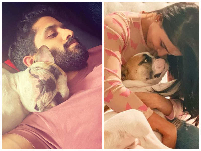 Samantha Akkineni shares a cute picture and pens a note about Hash on National Pet Day